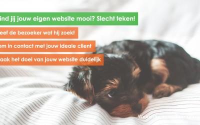 Vind jij jouw eigen website mooi? Slecht teken!